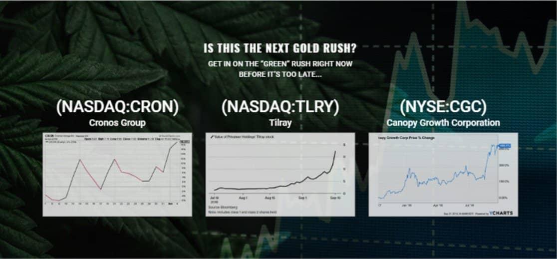 Commerciare Con Cannabis Millionaire