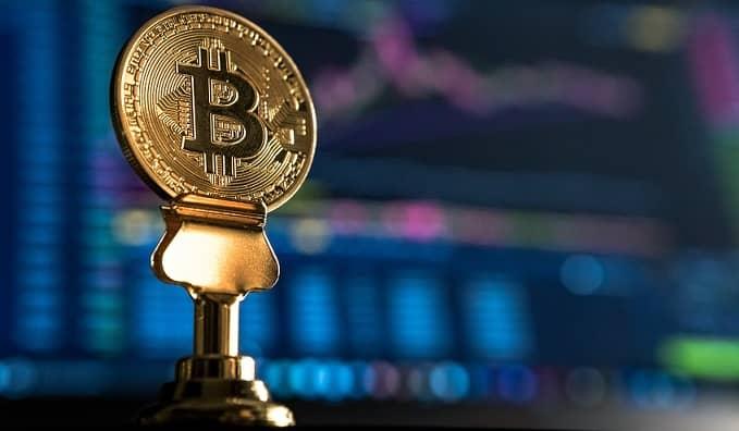 Quali sono le caratteristiche di Crypto Bull